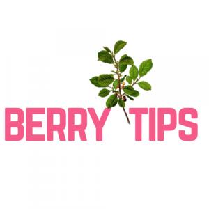 Berry Tips Logo